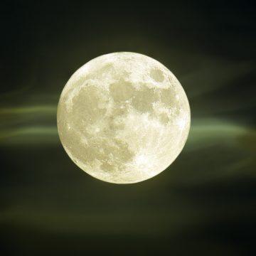 La Luna en tu signo: Tiempo de cosechar