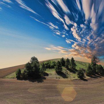 Similitudes y diferencias entre los signos de Tierra