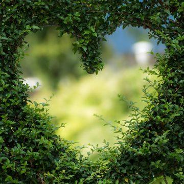 El signo Libra y el amor