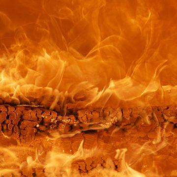 Conociendo más sobre los signos de fuego